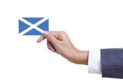 Bandiera della Scozia Immagine Stock