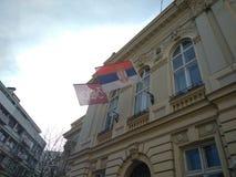 Bandiera della Serbia, Belgrado immagine stock libera da diritti