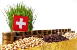 Bandiera della Svizzera che ondeggia con la pila di monete dei soldi ed i mucchi di grano Immagine Stock Libera da Diritti