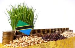 Bandiera della Tanzania che ondeggia con la pila di monete dei soldi ed i mucchi di grano Immagine Stock