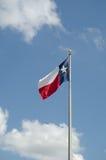 Bandiera dello stato del Texas Fotografia Stock Libera da Diritti