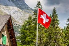 Bandiera dello svizzero - simbolo nazionale della Svizzera con le alpi in backgro Fotografia Stock Libera da Diritti