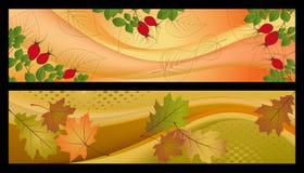 Bandiera di autunno Fotografia Stock