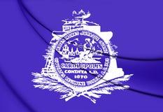 Bandiera di Charleston South Carolina, U.S.A. illustrazione vettoriale