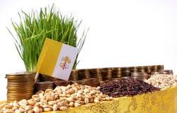 Bandiera di Città del Vaticano che ondeggia con la pila di monete dei soldi ed i mucchi di grano Fotografie Stock