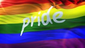 Bandiera di LGBT PRIDE Rainbow che ondeggia sul sole Ciclo pronto nella risoluzione 4k archivi video