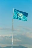 Bandiera di ONU. Immagine Stock