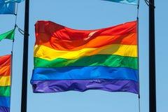 Bandiera di orgoglio Fotografie Stock Libere da Diritti