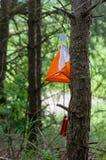 Bandiera di orienteering fotografie stock