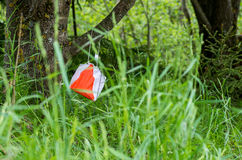 Bandiera di orienteering fotografie stock libere da diritti