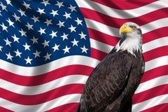 Bandiera di U.S.A. con l'aquila calva Fotografie Stock