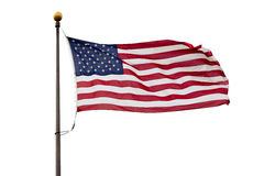 Bandiera di U.S.A. isolata su fondo bianco Fotografia Stock Libera da Diritti