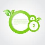 Bandiera ecologica verde con i fogli verdi Fotografia Stock Libera da Diritti