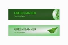 Bandiera ecologica verde con i fogli verdi Fotografia Stock