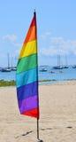 Bandiera gay della piuma immagine stock libera da diritti