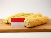 Bandiera indonesiana su un pannello di legno con cereale isolato su un bianco Fotografia Stock