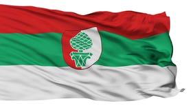 Bandiera isolata della città di Augusta, Germania illustrazione vettoriale