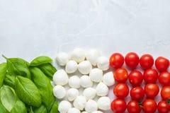 Bandiera italiana fatta con la mozzarella ed il basilico del pomodoro Il concetto immagini stock libere da diritti
