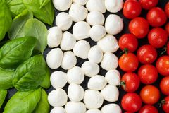 Bandiera italiana fatta con la mozzarella ed il basilico del pomodoro Il concetto di cucina italiana fotografie stock