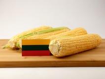 Bandiera lituana su un pannello di legno con cereale isolato su un bianco Fotografia Stock