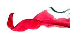Bandiera messicana Immagine Stock