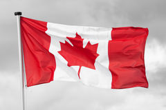Bandiera nazionale del Canada Fotografia Stock