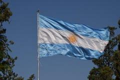 Bandiera nazionale dell'Argentina in vento fra gli alberi Fotografia Stock Libera da Diritti