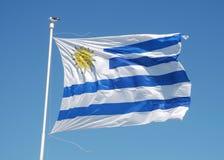 Bandiera nazionale dell'Uruguai Fotografia Stock