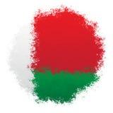 Bandiera nazionale della Bielorussia Immagini Stock
