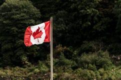 Bandiera nazionale di Canadas che ondeggia nel vento davanti al simbolo di legno canadese di nazioni della foglia di acero della  fotografia stock libera da diritti