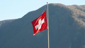 Bandiera nazionale di ondeggiamento della Svizzera stock footage