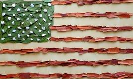 Bandiera organica di U.S.A. Immagine Stock