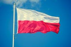 Bandiera polacca sul fondo del cielo blu Immagini Stock Libere da Diritti