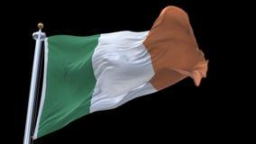 bandiera senza cuciture di 4k Irlanda che ondeggia in vento Alfa canale incluso stock footage