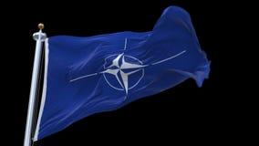bandiera senza cuciture di NATO 4k che ondeggia in vento Alfa canale incluso stock footage