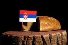 Bandiera serba su un ceppo con pane Fotografia Stock