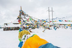 Bandiera tibetana sulla neve Immagini Stock Libere da Diritti