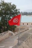 Bandiera tunisina Immagini Stock Libere da Diritti