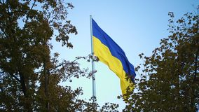 Bandiera ucraina stock footage