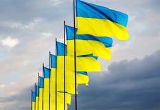 Bandiera ucraina Fotografia Stock