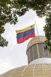 Bandiera Venezuela Fotografia Stock