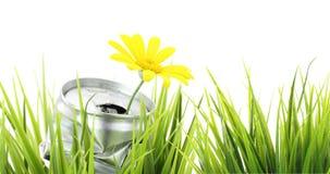 Bandiera verde di eco Fotografie Stock