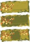 Bandiere Immagini Stock Libere da Diritti