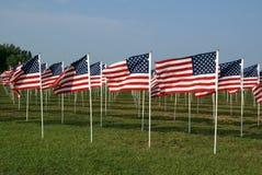 Bandiere americane Immagini Stock