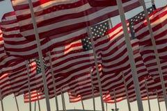 Bandiere americane che ondeggiano al tramonto Fotografie Stock Libere da Diritti