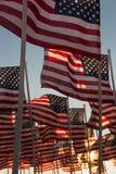 Bandiere americane che ondeggiano al tramonto Fotografia Stock Libera da Diritti
