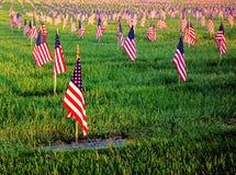 Bandiere americane degli Stati Uniti che onorano la tomba del cimitero dei veterani Fotografia Stock Libera da Diritti