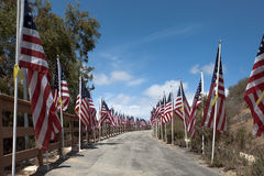 Bandiere americane Memorial Day, festa dell'indipendenza e giornata dei veterani Fotografie Stock Libere da Diritti