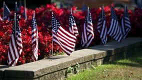 Bandiere americane nel letto di fiore Fotografia Stock