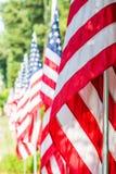 Bandiere americane in una fila Fotografia Stock